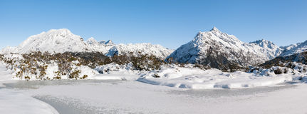 Along the Routeburn track. Royalty Free Stock Image