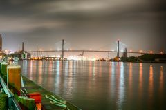 Along the Savannah River royalty free stock photos