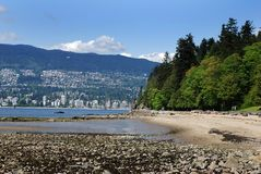 Along Stanley's Park Beach. The view of peaceful Stanley's park along with a beach and East Vancouver in a background (British Columbia, Canada Royalty Free Stock Photography