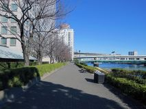 Along the Sumida River. Tokyo. Walk along the Sumida River. Tokyo Royalty Free Stock Image