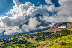 Along the Trail Glacier National Park Royalty Free Stock Image