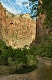 Along The Virgin River, Zion Stock Images