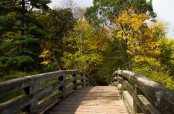 Along the wooden bridge. Stock Image