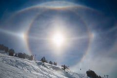 Aloni di Sun nell'inverno Immagini Stock