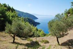 Alonissos coastline, Greece. Looking down to the coastline from Agii Anargiroi on the Greek island of Alonissos Royalty Free Stock Photography