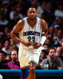 Alonzo Mourning Charlotte Hornets Immagini Stock