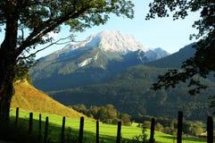 aloso alpes美好的山夏天 库存照片