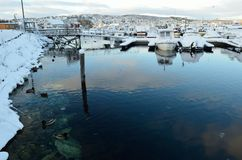 Alot of ducks swimming amongst snow covered boats. In marina Stock Photo