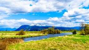 The Alouette River seen from the at the Pitt Polder near Maple Ridge in British Columbia. Canada with the Golden Ears Mountain in the background royalty free stock photography