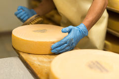 Alp cheese Royalty Free Stock Images