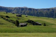 Alp de siusi famosa Val Gardena/verso sud nel Tirolo Immagine Stock