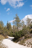 Alp dolina Fotografia Royalty Free