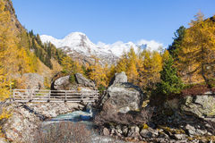 Alp footbridge Stock Photography