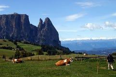Alp in het Dolomiet royalty-vrije stock afbeelding