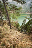 Alp-Lake north-shore. Hiking trail on the north bank of the Lake Alp in the Schwangau / Allgäu / Bavaria from the spring of 2015 Royalty Free Stock Photo