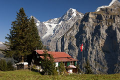 Alp met landbouwbedrijfhuis stock foto