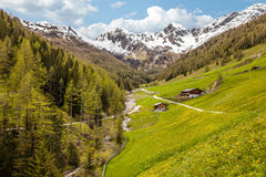Alp in South Tyrol Stock Photo