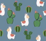 Alpaca divertida linda con el modelo del cactus Fotos de archivo