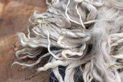 Alpaca Fiber Royalty Free Stock Photo