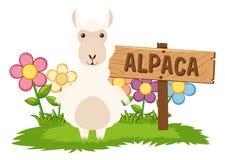 Alpaca linda en jardín stock de ilustración