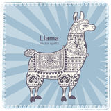 Alpaca Llama animal with ethnic ornaments Royalty Free Stock Photo