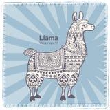 Alpaca Llama animal with ethnic ornaments Royalty Free Stock Photo