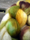 Alpaca and mohair wool Stock Image
