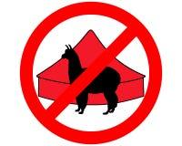 Alpaga dans le cirque interdit Image libre de droits