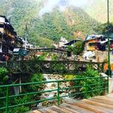 Alpaga in Machu Picchu Fotografie Stock