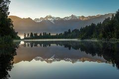 Alpaga, Nuova Zelanda Fotografia Stock Libera da Diritti