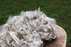Alpaka-Verschlüsse Stockfotos