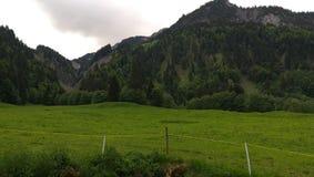 Alpe lizenzfreies stockfoto