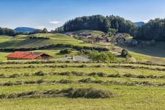 Alpe con fieno di secchezza in montagne tedesche vicino a Berchtesgaden Fotografia Stock