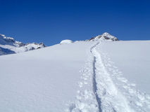 Alpe Croslina Fotos de Stock Royalty Free