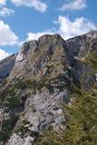 Alpe della montagna Fotografia Stock