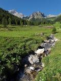 Alpe in den Raetikon-Bergen Stockfotografie