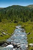 Alpe Devero,河和森林的视图 免版税库存照片