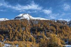 Alpe Devero, сезон осени, Пьемонт - Италия Стоковые Фотографии RF