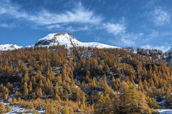 Alpe Devero, autumn season, Piedmont - Italy Royalty Free Stock Photos