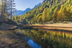 Alpe devero autumnal mountain landscape. Grass meadows growing on a water pond with nice reflections inside the Alpe Devero flat land stock photo