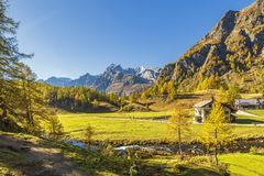 Alpe devero autumnal mountain landscape. A river flowing inside the Alpe Devero flat land with houses, larches and pines trees and mountains in the background royalty free stock photos