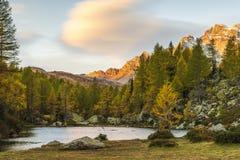 Alpe devero autumnal mountain landscape royalty free stock image