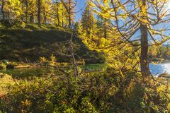 Alpe devero autumnal mountain landscape. Sunset over the Lake of the witches inside the Alpe Devero flat land royalty free stock images