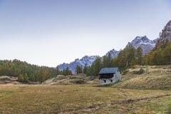 Alpe devero autumnal mountain landscape. Sunset over a larches and pines trees forest inside the Alpe Devero flat land royalty free stock photo