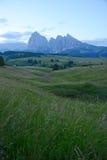 Alpe di Siusi Immagine Stock Libera da Diritti