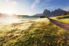 Alpe di Siusi alla mattina soleggiata Fotografie Stock