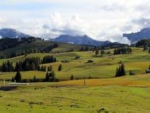 Alpe di Siusi Fjälläng panoramautsikt Arkivfoto