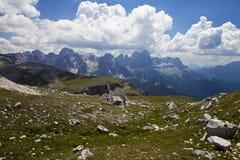 Alpe di siusi nel Tirolo del sud, Italia Immagini Stock