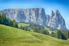 Alpe di Siusi nella stagione estiva Fotografie Stock Libere da Diritti