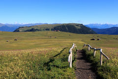 Alpe di Siusi Royalty Free Stock Photos